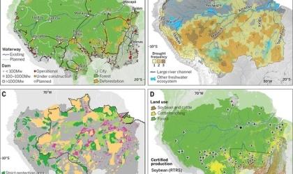 6. 亚马孙热带雨林丧失速度减缓