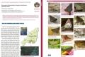 印度生物多样性专题一:印度东北部那加兰邦蝴蝶多样性1