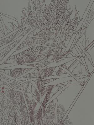 03《棕榈摇曵蝶为舞》张成军