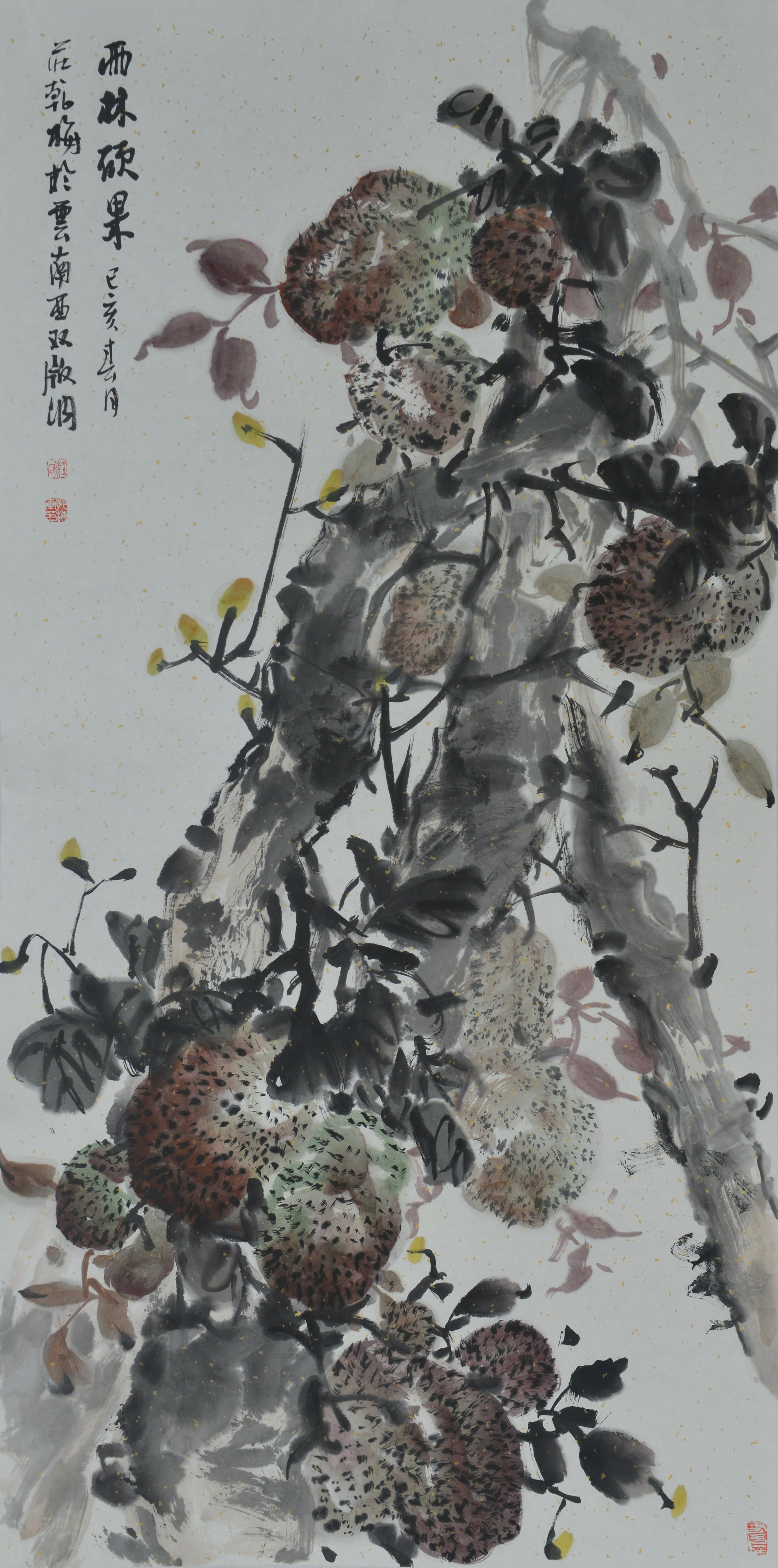 50《雨林硕果》庄乾梅