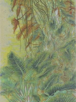 02《森林的呼吸》陈江晓