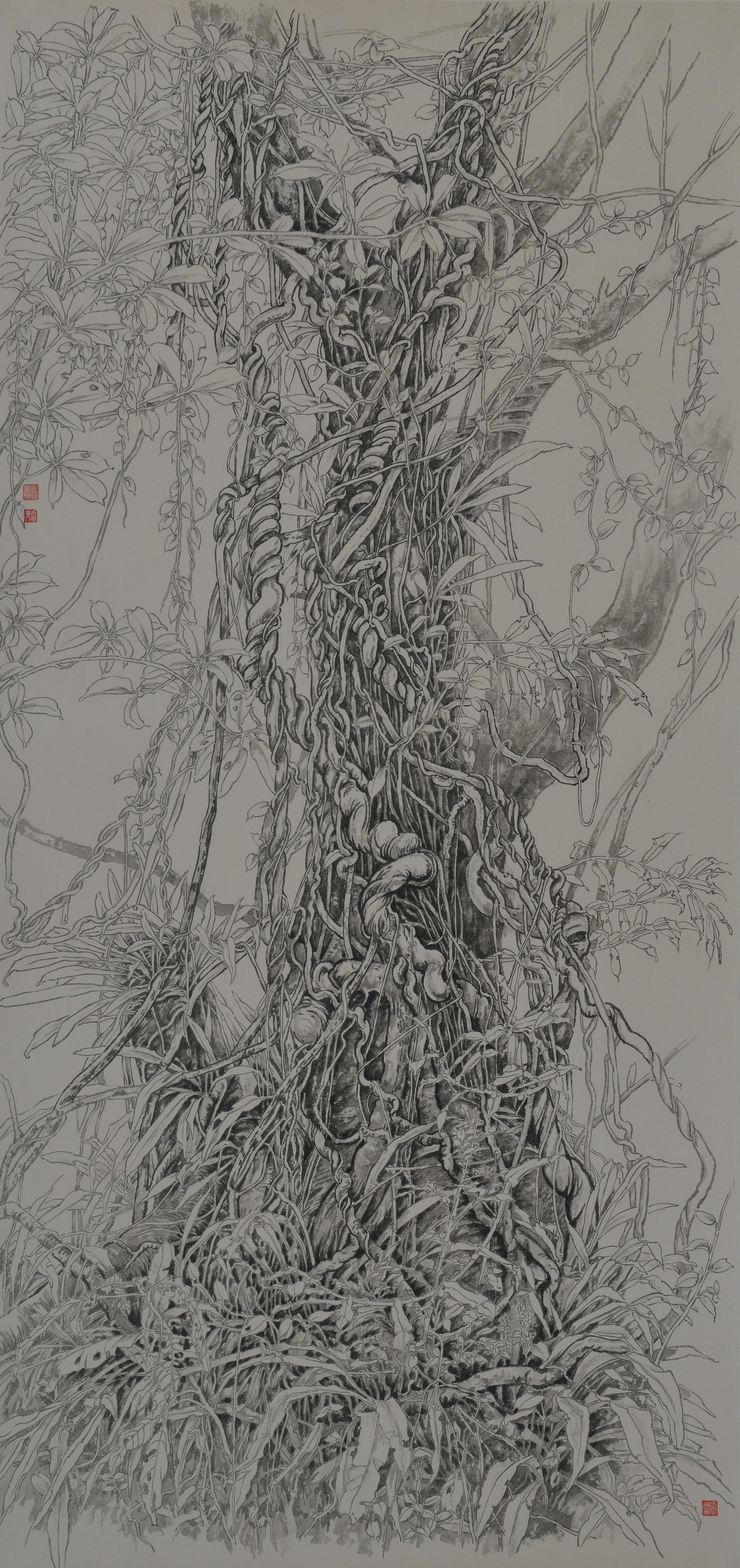 02《雨林爱情--藤缠树》温太云